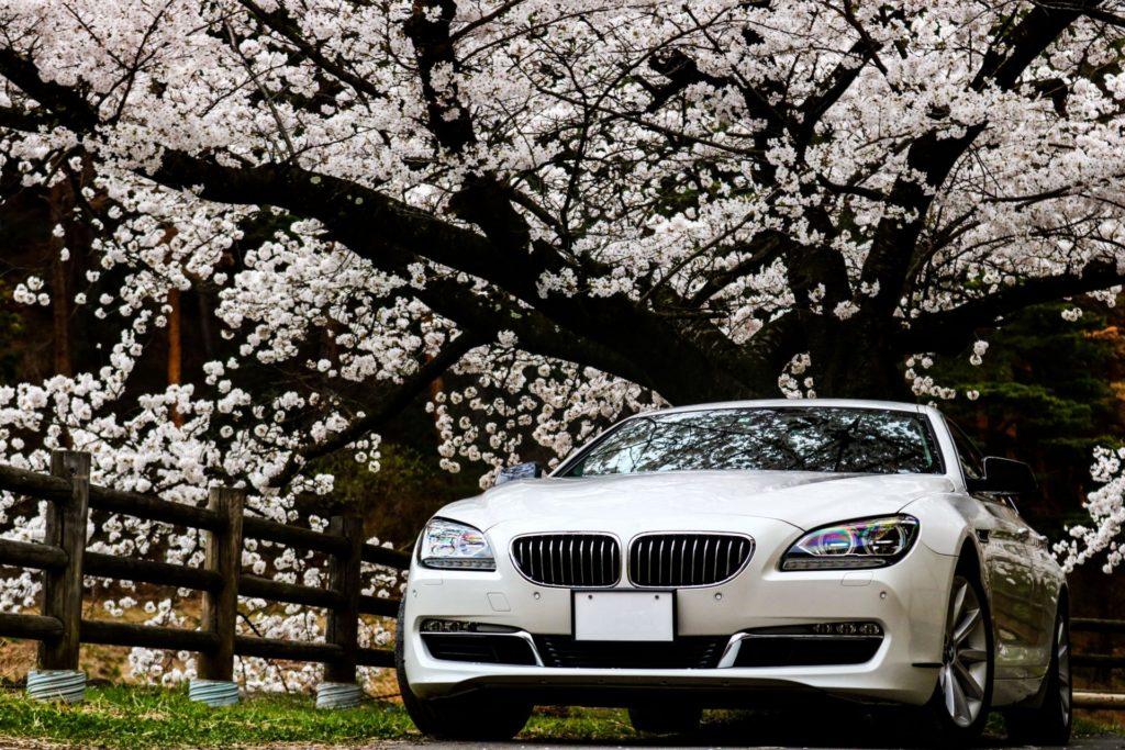 【自動車保険】自動車保険の保険料の支払い方法は何が良いの?